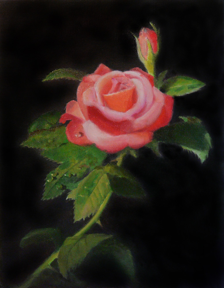 Paint And Draw Together: Horst Hittenberger - Red Orange Rose
