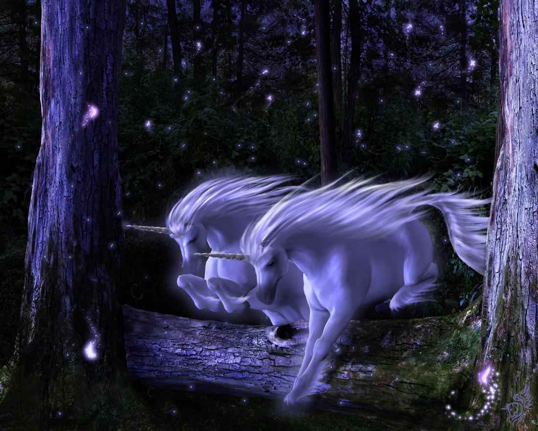 http://4.bp.blogspot.com/_vrmzeDiJSj4/TTz8XLmaCuI/AAAAAAAAAPI/lSBaRwREYwY/s1600/Unicorn-Wallpaper-unicorns-6100051-1100-880.jpg