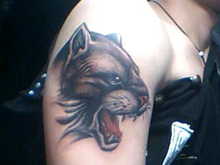 cougar tattoo design on the arm