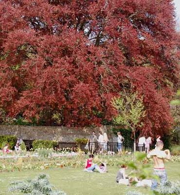 Grange Gardens, Lewes, UK