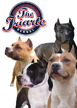 Blogger: User Profile: THE IRIARTE KENNEL