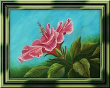 My Hibiscus