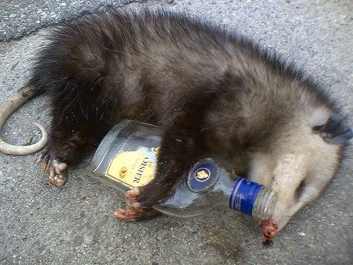 [Image: Nithyananda-playing-possum.jpg]
