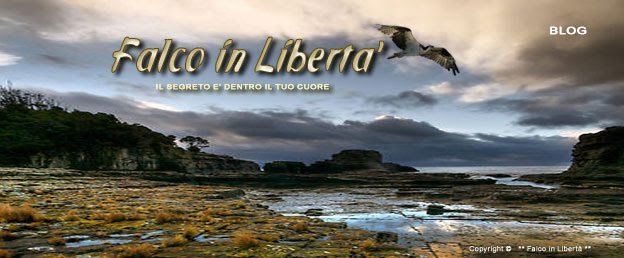 Falco in Libertà