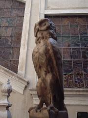 a coruja do saber