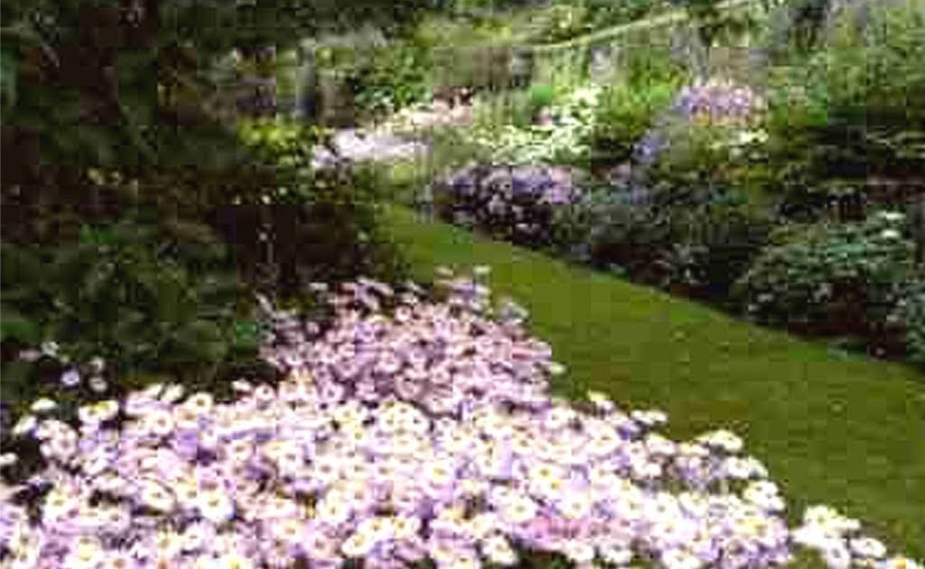 as plantas no jardim do século XX