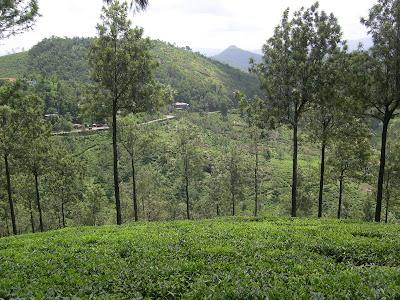 Idukki Hills
