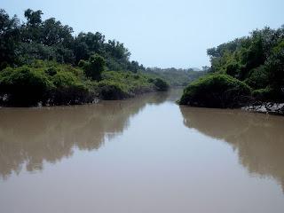 Arli river