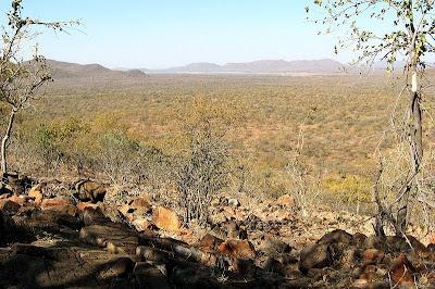 Mokolodi natural reserve
