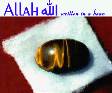 M 2 - ~*~Islamic Miracles Pictures(Love with Allah)~*~