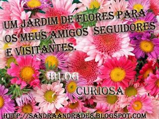 http://4.bp.blogspot.com/_vzrlnu76oJw/SmYh3JjDZ3I/AAAAAAAABx4/aoIqoirdg8s/s320/Floresparaisa.+c%C3%B3pia.jpg