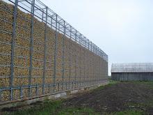 La Cage Aux Corn