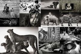 Mundo Fotográfico