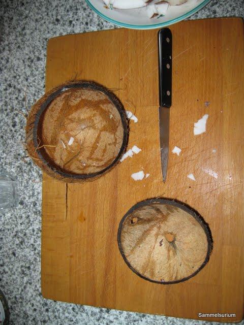 sammelsurium j ger und sammler 2 0 rasierseifenschale selber machen kokosnuss. Black Bedroom Furniture Sets. Home Design Ideas