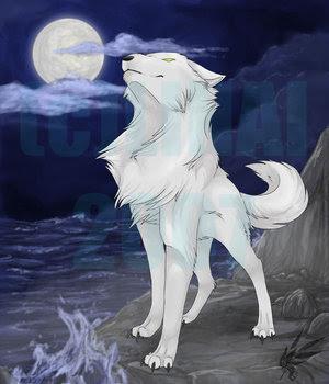Beach White Wolf
