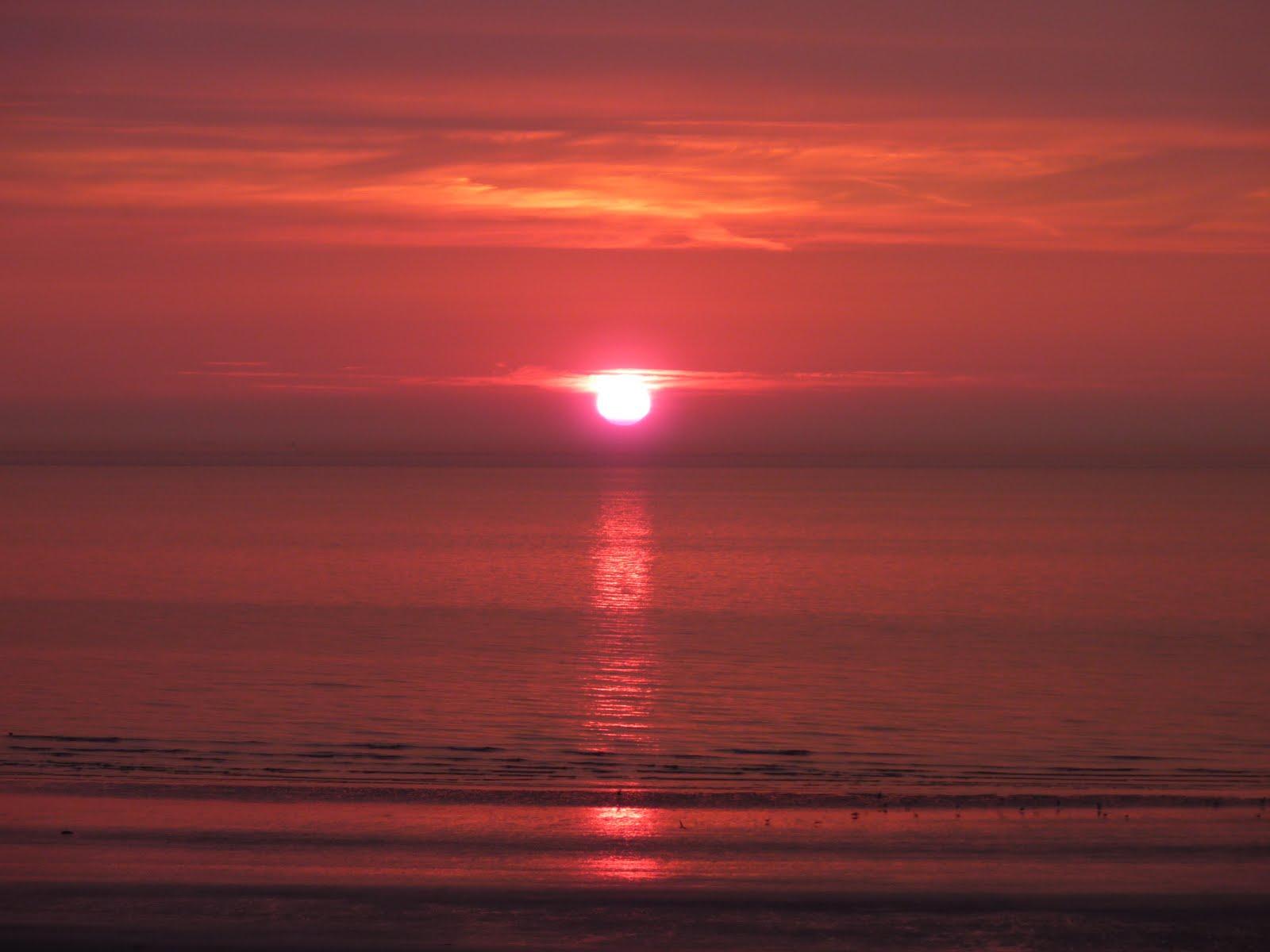 Naissance de rose le coucher de soleil la mer du nord - Coucher de soleil rose ...