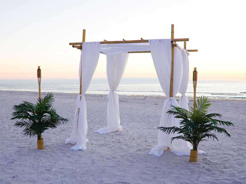 BAMBOO WEDDING CANOPY | RAINWEAR