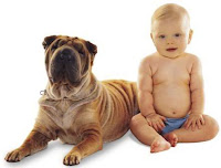 cutest baby and wrinkly dog
