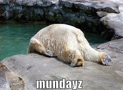 Mondays_Polar_Bear