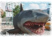 jaws attraction picture image photo