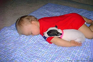 baby and puppy image photo picture