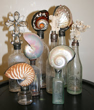 Vintage Shell Bottle Collection & Vintage Coral Bottle Collection