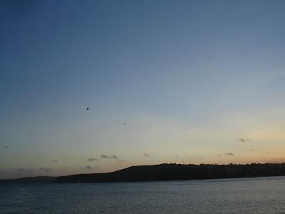 Manly Beach DSC05605