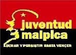 JUVENTUD MALPICA