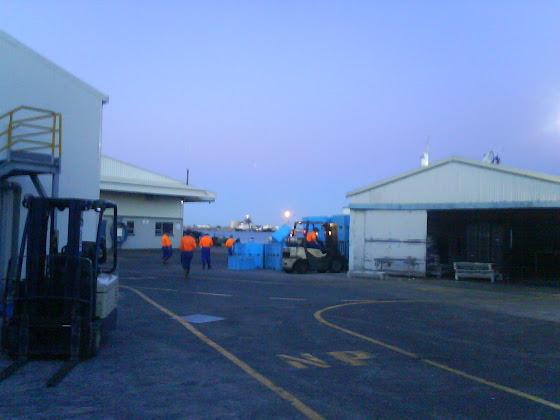 Fish Factory - Tauranga - Nueva Zelanda