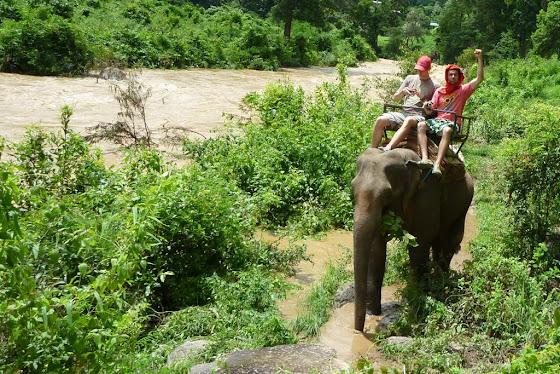 Aquí voy yo en el elefante en Chiang Mai