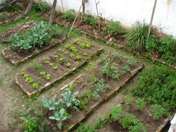 jardiner a paisajismo cultivando hierbas en el jard n