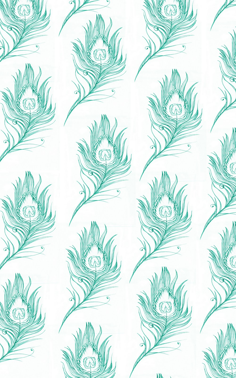 amy holliday illustration peacock feather design