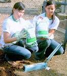 Pupuk Organik Bagi Pemupukan Kebun