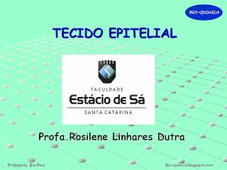 download ultrasonic transducer