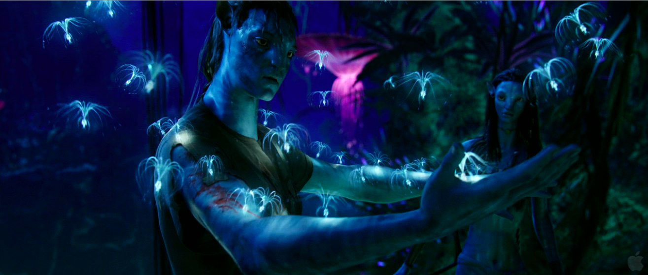 Monday night magical movie avatar special edition 3d