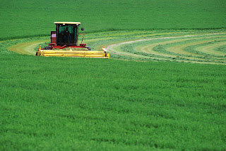 Production of climate-resistant crops