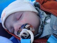 Baby Xander