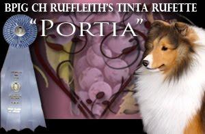 BPIG CH Ruffleith's Tinta Rufette