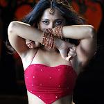 Sexy Telugu Actress Anushka
