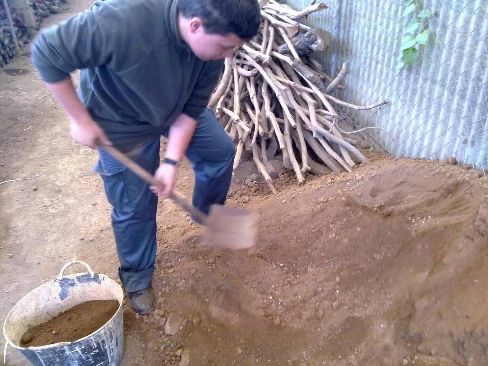 Curso auxiliar jardineria preparaci n de semilleros - Tierra para semilleros ...