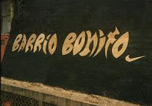 terminadoBARRIO BONITO,NIKE