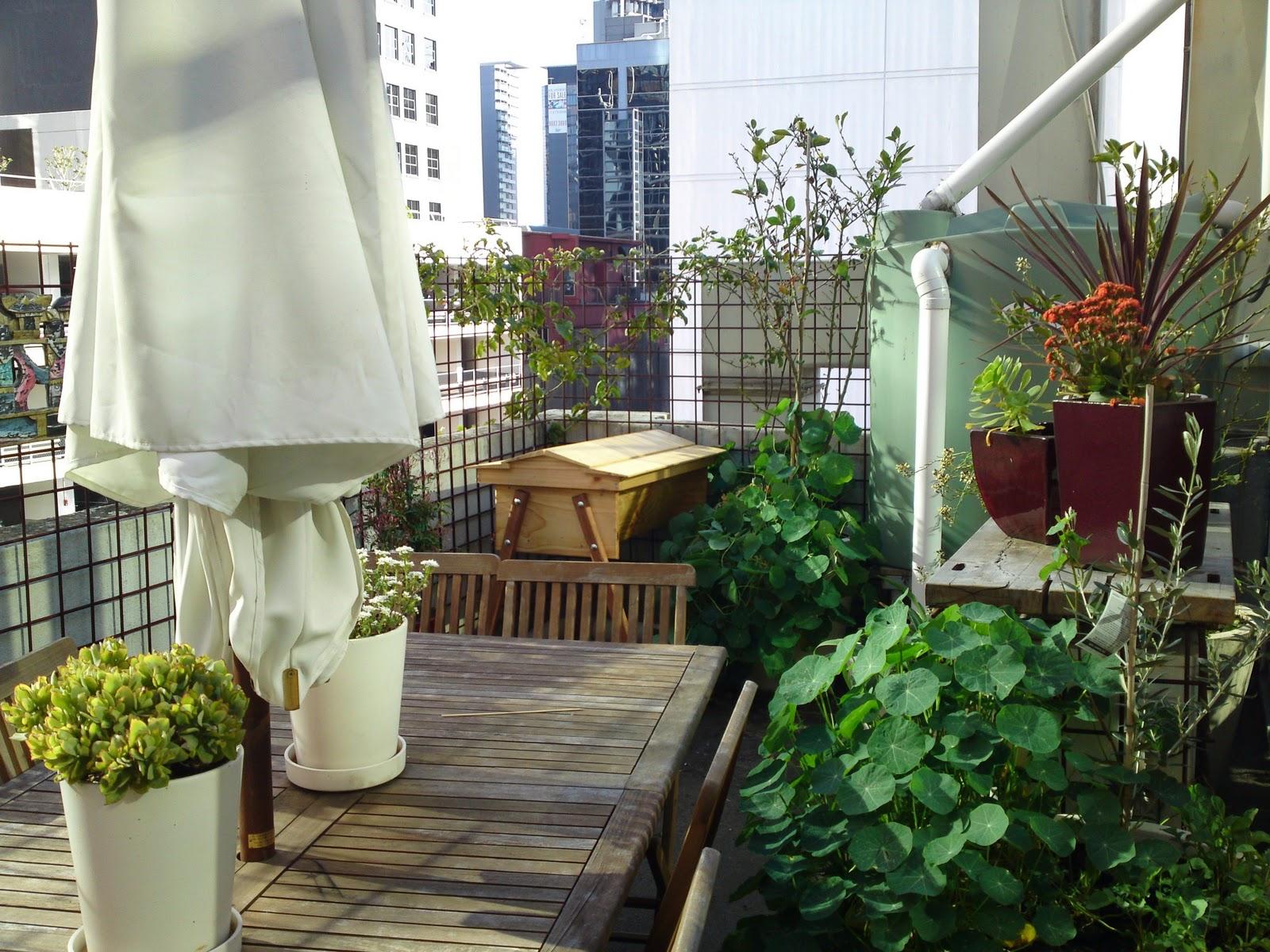 The urban hive for Balcony ki design