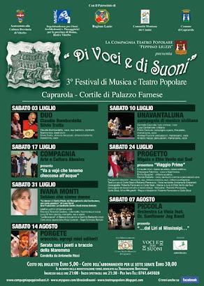 """Festival """"DI VOCI E DI SUONI"""" 2010"""