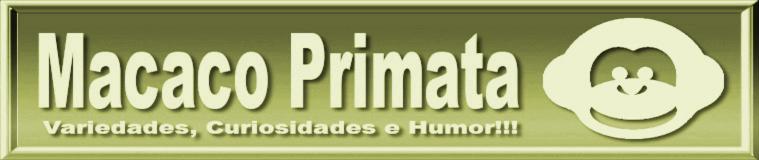 Macaco Primata