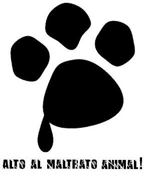 Amamos los Animalitos!