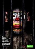 Circo sin Animales Salvajes!!
