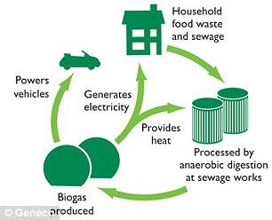 obtención del biogás
