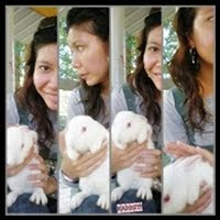 I lUv all the animals! They are so fun! but yg bebulu je..hehe..gebu! haha