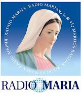Radio María España - En directo