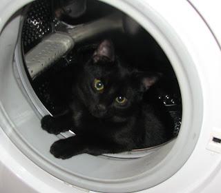 Miro pesukoneessa
